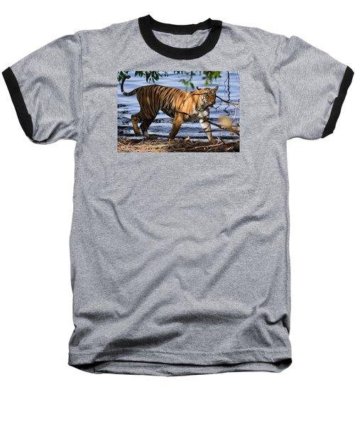 Tigress Along The Banks Baseball T-Shirt by Fotosas Photography