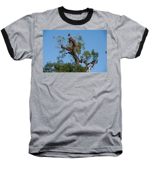 Tikal Furry Tree Baseball T-Shirt