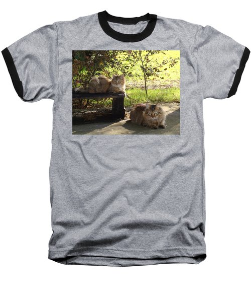Timber And Cougar Baseball T-Shirt