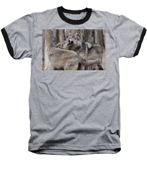 Baseball T-Shirt featuring the photograph Timber Wolves Playing by Wolves Only