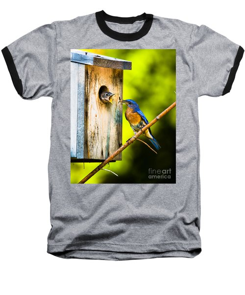 Time To Fly Baseball T-Shirt