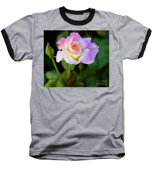 Rose-touch Me Softly Baseball T-Shirt by David Millenheft