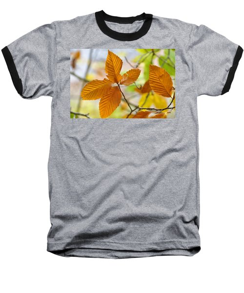 Touch Of Gold Baseball T-Shirt by Jan Amiss Photography