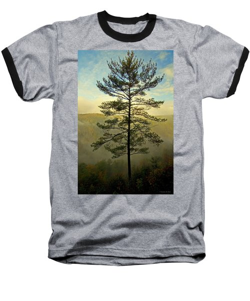Towering Pine Baseball T-Shirt by Suzanne Stout