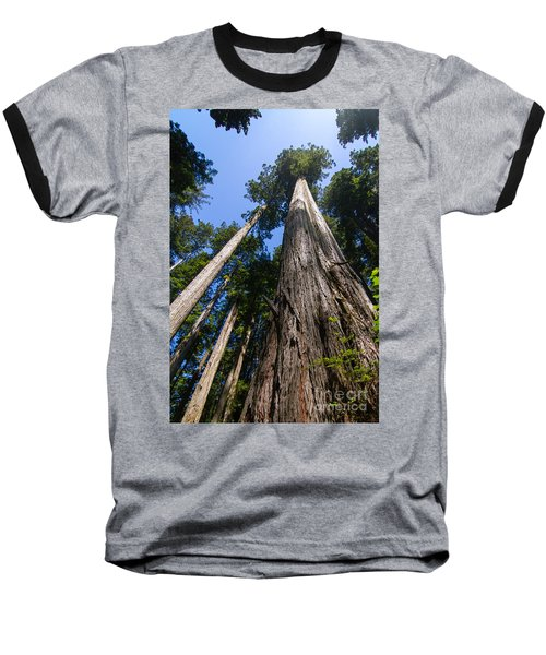 Towering Redwoods Baseball T-Shirt