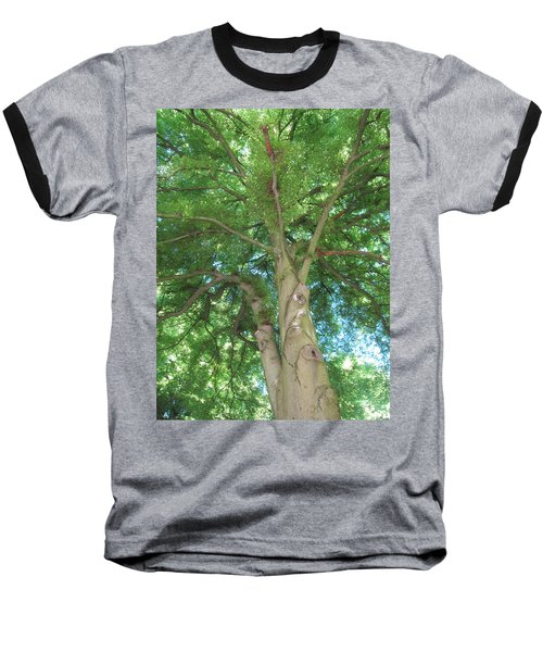 Baseball T-Shirt featuring the photograph Towering Tree by Pema Hou
