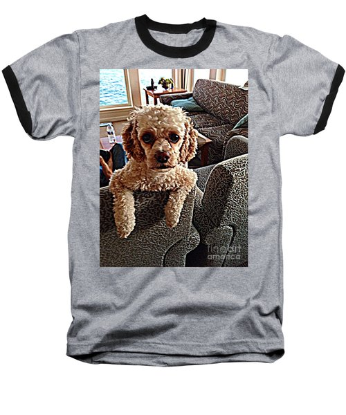 Toy Cockapoodle 1 Baseball T-Shirt
