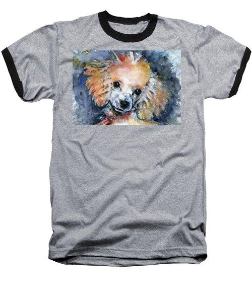 Toy Poodle Baseball T-Shirt by John D Benson