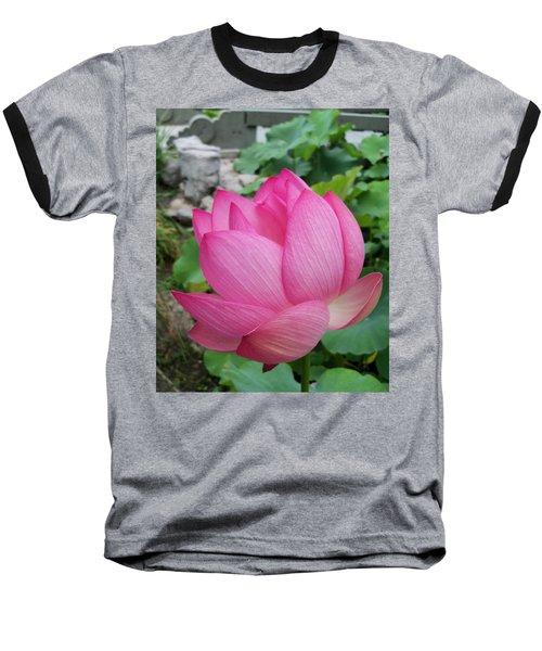 Tranquil Lotus  Baseball T-Shirt by Lingfai Leung