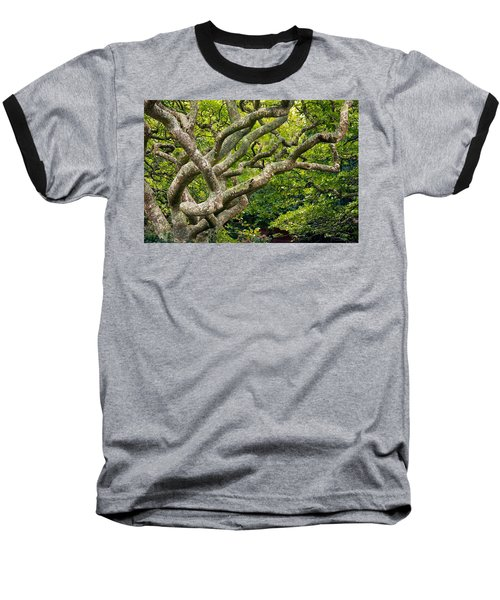Tree #1 Baseball T-Shirt