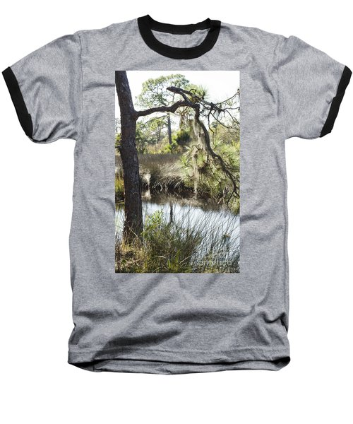 Tree And Branch Baseball T-Shirt