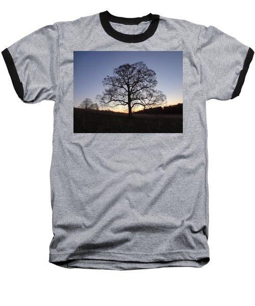 Tree At Dawn Baseball T-Shirt by Michael Porchik