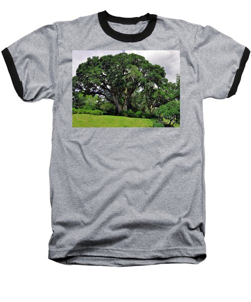 Tree By The River Baseball T-Shirt