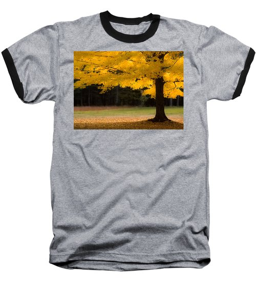 Tree Canopy Glowing In The Morning Sun Baseball T-Shirt