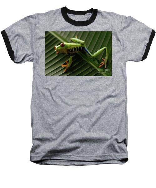 Tree Frog 16 Baseball T-Shirt