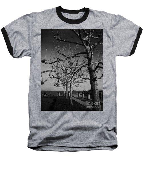 Tree In A Row  Baseball T-Shirt