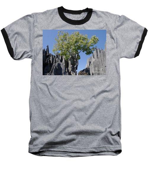 Baseball T-Shirt featuring the photograph Tree In The Tsingy De Bemaraha Madagascar by Rudi Prott