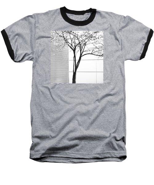 Tree Lines Baseball T-Shirt by Darryl Dalton