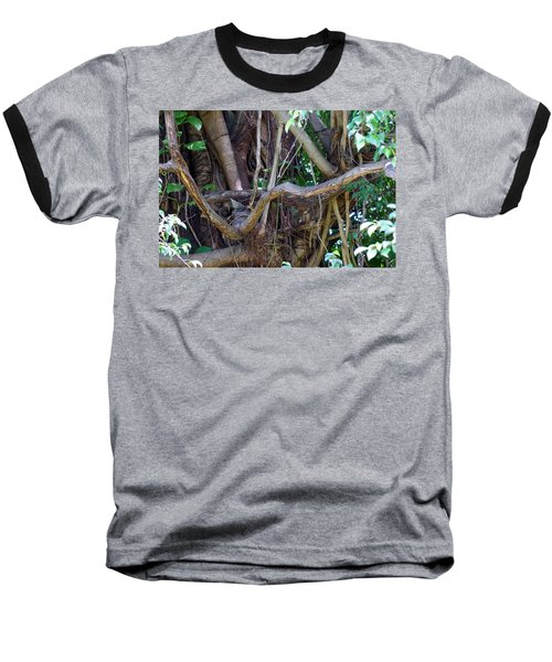 Baseball T-Shirt featuring the photograph Tree by Rafael Salazar