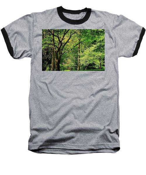 Tree Series 3 Baseball T-Shirt