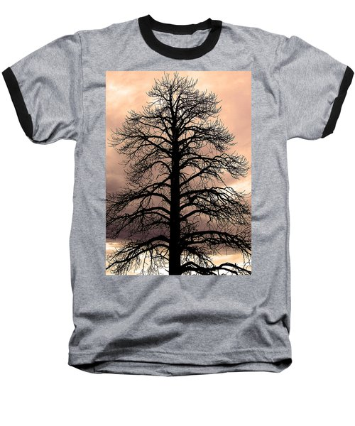 Tree Silhouette Baseball T-Shirt
