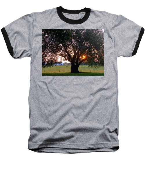 Tree With Fence. Baseball T-Shirt