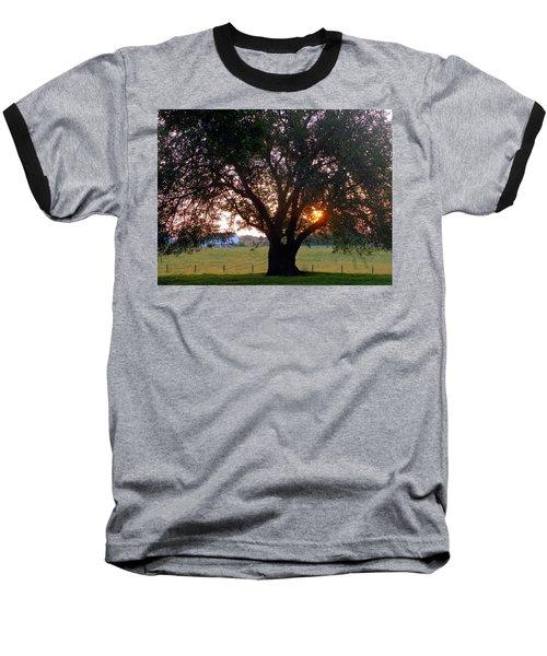 Tree With Fence. Baseball T-Shirt by Joseph Skompski