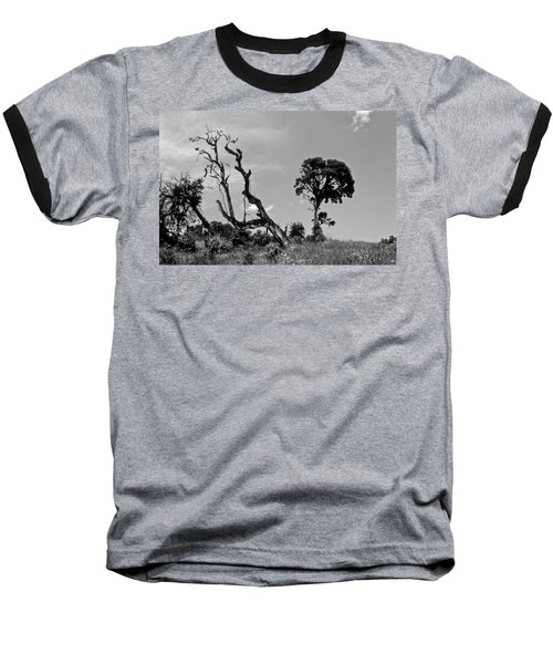 Baseball T-Shirt featuring the photograph Trees In Cloud Forest by Lana Enderle