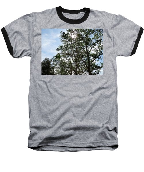 Trees At The Park Baseball T-Shirt by Laurel Powell