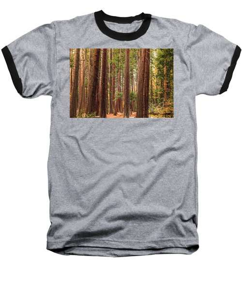 Trees Of Yosemite Baseball T-Shirt by Muhie Kanawati