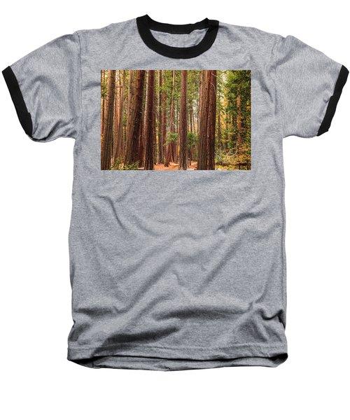 Trees Of Yosemite Baseball T-Shirt