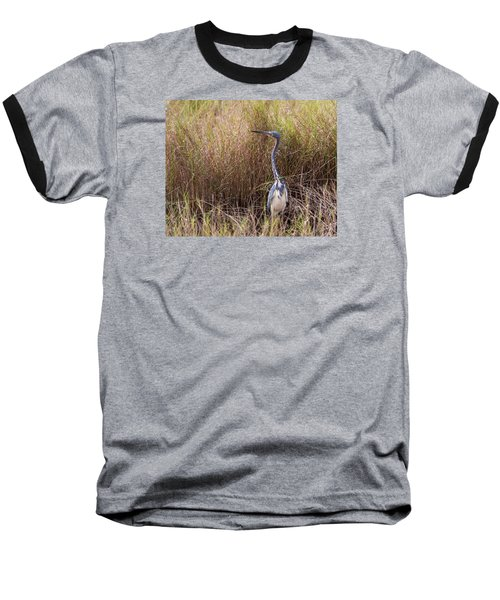 Tricolored Heron Peeping Over The Rushes Baseball T-Shirt by John M Bailey