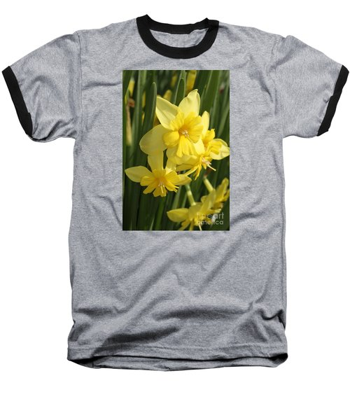 Tripartite Daffodil Baseball T-Shirt by Judy Whitton