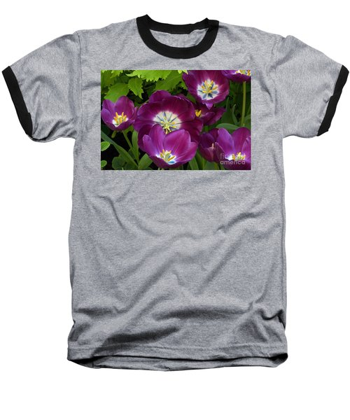 Triumph Tulips Negrita Variety Baseball T-Shirt