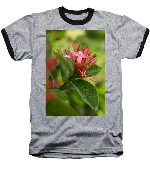 Tropical Flowers In Singapore Baseball T-Shirt