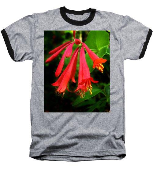 Wild Trumpet Honeysuckle Baseball T-Shirt