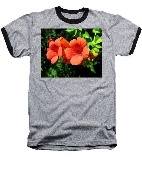 Wild Trumpet Vine Baseball T-Shirt
