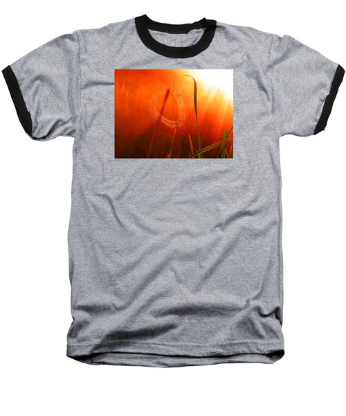 The Spider's Web In Golden Sunlight Baseball T-Shirt