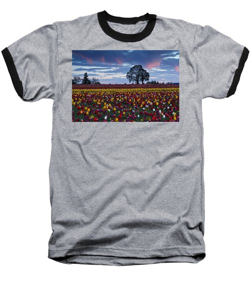 Tulip Field's Last Colors Baseball T-Shirt by Wes and Dotty Weber