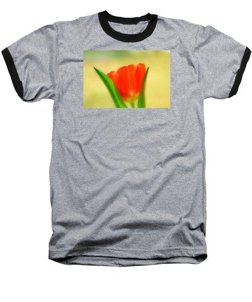 Tulip  Baseball T-Shirt by Menachem Ganon