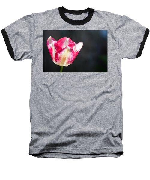 Tulip On Black Baseball T-Shirt by Photographic Arts And Design Studio