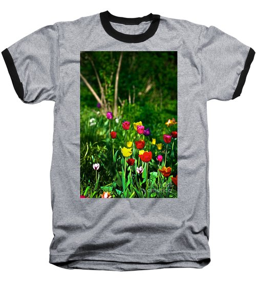 Tulip Rainbow Baseball T-Shirt
