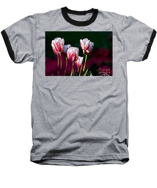 Baseball T-Shirt featuring the photograph Tulips Garden Flowers Color Spring Nature by Paul Fearn