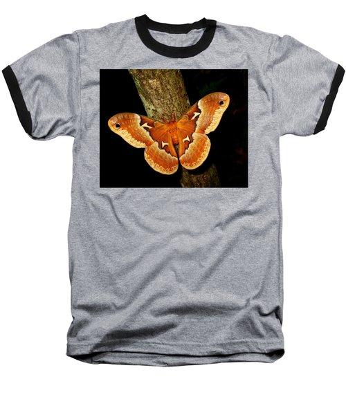 Tuliptree Silkmoth Baseball T-Shirt