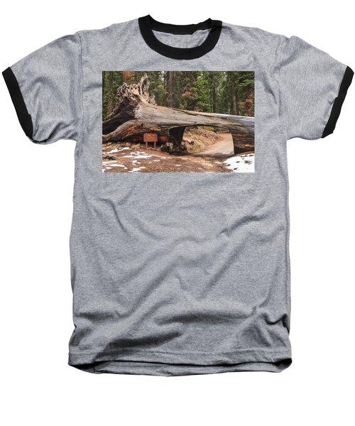 Tunnel Log Baseball T-Shirt