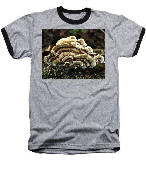 Turkey Tail Fungi Baseball T-Shirt