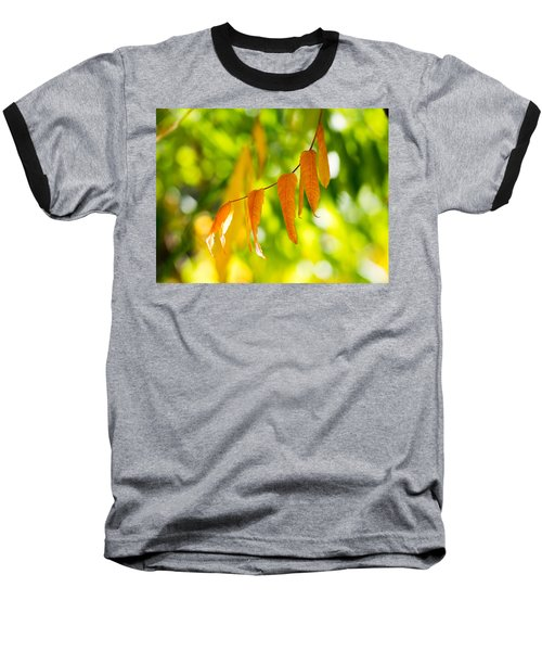 Turning Autumn Baseball T-Shirt by Aaron Aldrich