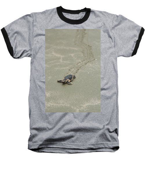 Turtle Tracks Baseball T-Shirt