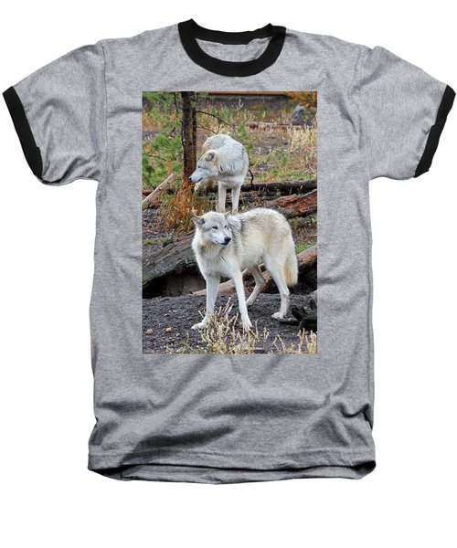 Baseball T-Shirt featuring the photograph Twin Wolves by Athena Mckinzie