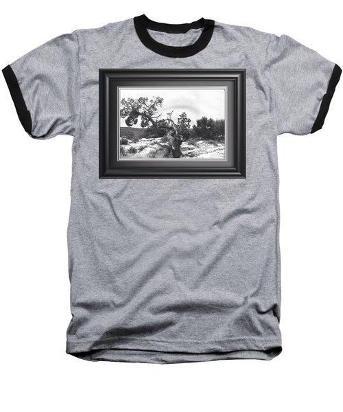 Twisted. Natures Prank Baseball T-Shirt by Catherine Swerediuk